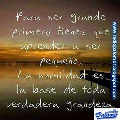 Radio Palomo: La humildad es la clave del exito....