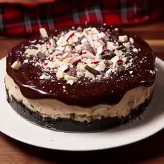 Peppermint Cheesecake Chocolate Peppermint Cheesecake is the mother of all holiday desserts.Chocolate Peppermint Cheesecake is the mother of all holiday desserts. Winter Desserts, Christmas Desserts, Easy Desserts, Dessert Recipes, Christmas Cookies, Baking Desserts, Easter Recipes, Recipes Dinner, Lunch Recipes