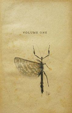 3wings:    Phasmid – Volume One, 2011Christine Willcocks