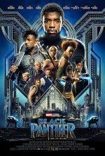 Kara Panter - Black Panther ( 2018 )