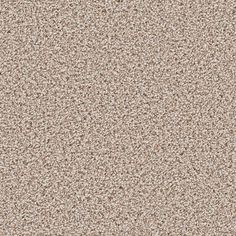 Home Decorators Collection Carpet Sample - Trendy Threads II - Color Park City Texture 8 in. x 8 - The Home Depot Hardwood Tile, Carpet Padding, Carpet Samples, Flooring Store, Patterned Carpet, Park City, Texture