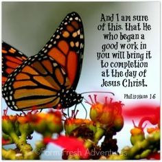 Scripture Verses, Bible Verses Quotes, Bible Scriptures, Faith Quotes, Religious Quotes, Spiritual Quotes, Butterfly Quotes, Peace Quotes, Favorite Bible Verses