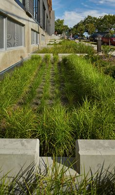 """Check out our internet site for additional information on """"rainwater harvesting system"""". It is an exceptional area for more information. Organic Horticulture, Organic Gardening, Urban Landscape, Landscape Design, Rainwater Harvesting System, Water From Air, Lawn Sprinklers, Water Management, Rain Garden"""