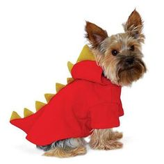 I think Diesel would look so cute in this for Halloween, but I think Aly would make the more impressive dragon