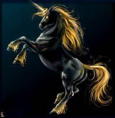 Black and Gold Unicorn