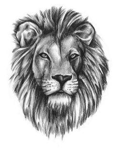 Lion Head Tattoo Outline Realistic lion head tattoo