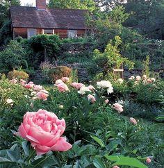 Tasha Tudor's garden & home (One of my very favorite authors.)