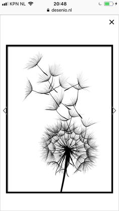 Fairy, Dandelions, Flowers, Plants, Posters, Wallpapers, Etchings, Tatoo, Girl Rooms