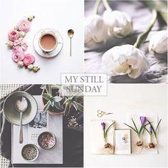 Kim Klassen My Still Sunday Hello Sunday, Online Art Classes, Still Life Photos, Still Life Photography, Coffe Cups, Coffee, Be Still, Overlays, Tea