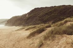 Australia – Countryside of Melbourne » Alexandra Kasper Photography | wedding & portrait photographer | based in munich | available worldwide | Alexandra Kasper Fotografie | Fotografin für Hochzeit & Portrait | München | weltweit buchbar