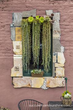 Window adorned with Succulents at the Succulent Cafe in Oceanside - www.succulentsandsunshine.com