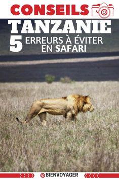 5 eurreurs a eviter en safar en tanzanie - Adrique --- #tanzanie #africa #safari #erreurs #conseils
