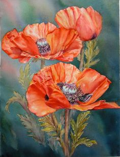 Red Poppies by marianne Broome Watercolor Poppies, Red Poppies, Watercolor Paintings, Original Paintings, Art Floral, China Painting, Flower Pictures, Flower Art, Beautiful Flowers