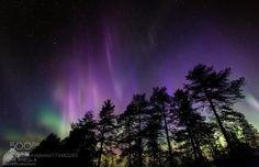 Lichtspektakel der Nordlichter in Finnland by urs-schmidli