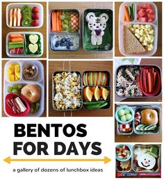 lots and lots of school lunch and bento ideas