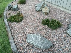 Stepping Stones, Landscaping, Yard, Outdoor Decor, Home Decor, Homemade Home Decor, Yard Landscaping, Garten, Courtyards