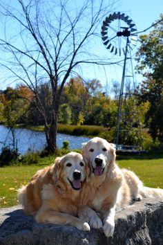 Pakenham Ontario behind the 5 Span Bridge Feed Store .. Brie and Ben all smiles