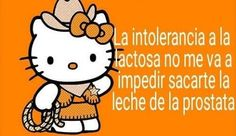 Hello Kitty, Frases Tumblr, Aesthetic Stickers, Love Memes, Meme Faces, Funny Me, Reaction Pictures, Cringe, Dumb And Dumber