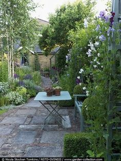 simple, is lovely. #LittleGardenDesign