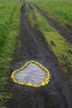 Nature art photography andy goldsworthy 21 Ideas for 2019 Land Art, Photography Projects, Art Photography, Instalation Art, Ephemeral Art, Outdoor Art, Environmental Art, Nature Crafts, Street Art