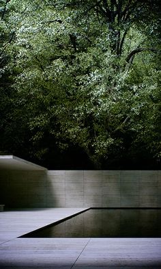 Pool http://www.turbosquid.com/3d-models/3d-barcelona-pavilion-mies-van-model/663257?referral=tgarch
