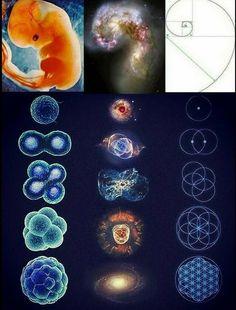 Spirit Science, Golden Ratio, Sacred Geometry