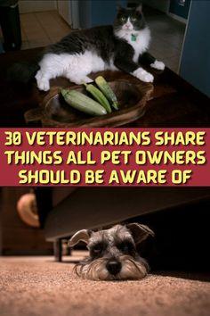 #Veterinarians #Pet #Owners #Aware