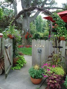 Archway over garden gate | FRONT YARD | SIDE YARD | n.b. - This simple wooden fence and gate are all that we need.