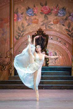 Cascanueces 2015. Ballet de Santiago. Foto de Patricio Melo Fotógrafo Teatro Municipal de Santiago.