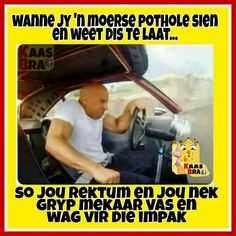 Afrikaans, Fangirl, Funny Pictures, Jokes, Lol, Baseball Cards, South Africa, Flowers, Beautiful