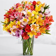 proflowers mother's day free shipping code