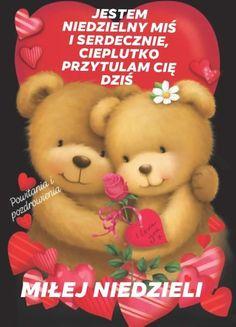 Good Morning, Teddy Bear, Humor, Afrikaans, Animals, Buen Dia, Animales, Bonjour, Animaux