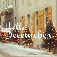 This year has already been so amazing. So many changes to my life and attitude. Can't wait to see what December has in store for me! Days And Months, Hello December, Place Card Holders, Christmas Tree, Neon Signs, Seasons, Holiday Decor, Instagram Posts, Celebrating Christmas