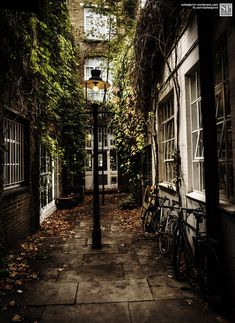 This image captures the beauty and charm of picturesque London. Our images are printed on a smooth acid free cotton rag, natural white, heavyweight fine art paper. They are archival and museum quality with a light fastness rating of years. The Places Youll Go, Places To Visit, Alleyway, Play Houses, London England, England Uk, Beautiful Places, Wonderful Places, Photos