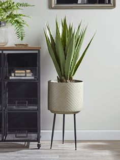 NEW Standing Textured Planter