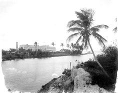 Florida Memory - Royal Palm Hotel on the Miami River at Biscayne Bay - Miami, Florida 1900