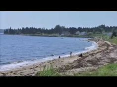 Only 30 minutes from Halifax, we have the best drive this side of the Cabot Trail. And Hubbards Cove is one of the most beautiful places to take a few days o. Cabot Trail, Most Beautiful, Beautiful Places, Good Drive, The Province, Nova Scotia, Relax, Canada, Beach