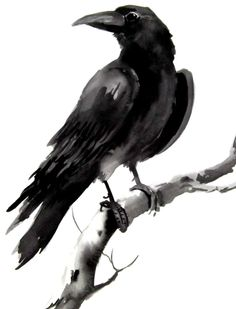 Crow. Unfortunately this link doesn't go anywhere but it's still a beautiful painting.