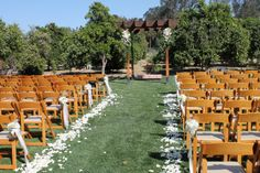 Aisle with hanging jars, rose petals and arbor