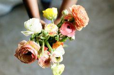 ▲ the sweet light . a jarrett #Flower #Roses