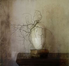 Elegance.        141    Made Explore. by jennyw47, via Flickr
