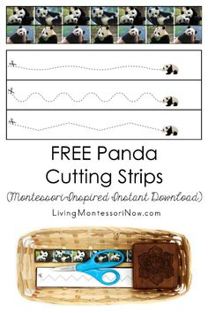 These free Montessori-inspired panda cutting strips are an instant download with a variety of skill levels; scissor cutting practice for classroom or home - Living Montessori Now #Montessori #homeschool #preschool #beartheme #pandatheme #ChineseNewYear