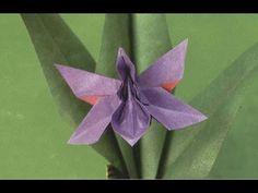 Origami Munich Orchid (HD)- زهرة الاوركيد - YouTube
