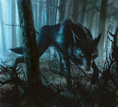 This magic is dark and evil, and allows her to take another wolf's power when she kills him. Description from rpnation.com. I searched for this on bing.com/images