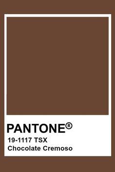 Pantone Chocolate Cremoso
