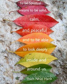 To be spiritual means to be solid, calm, and peaceful and to be able to look deeply inside and around us. Buddhist Wisdom, Buddhist Quotes, Buddhism, Calm Quotes, Strong Quotes, Quotes Quotes, Powerful Quotes, Spiritual Path, Spiritual Awakening