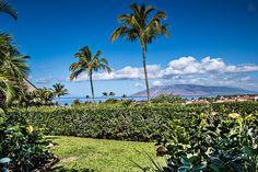 Ocean View new 1 Bdrm Maui Kamaole - vacation rental in Kihei, Hawaii. View more: #KiheiHawaiiVacationRentals
