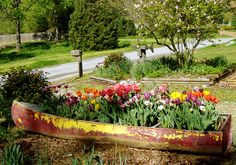 flower bed out of an old boat! @Patty Markison Edwards Rozek