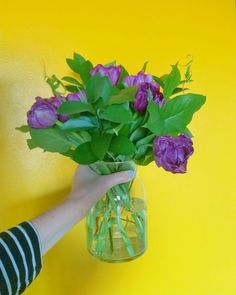 Pantone Color of The Year Bouquet: Ultra Violet Tulips with Greenery Mexico Vacation, Condo Living, Color Of The Year, Pantone Color, Retail Therapy, Ultra Violet, Tulips, Greenery, Glass Vase