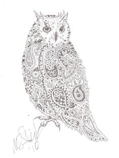 Image from http://th00.deviantart.net/fs71/PRE/i/2010/138/4/3/Paisley_owl_by_mcalick.jpg.